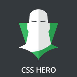 CSS Hero review by our experts