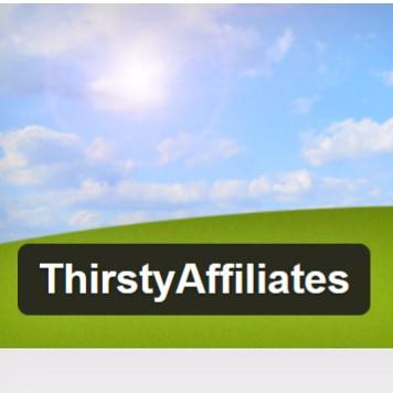thirstyaffiliates-plugin-review