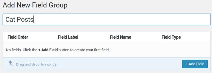 Advanced Custom Fields Review - add new field group