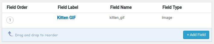 Advanced Custom Fields Review - field name