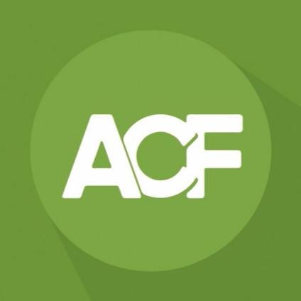 Advanced Custom Fields Review