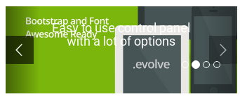 Evolve Review - slider widget what
