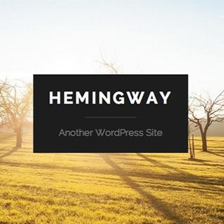Hemingway Review