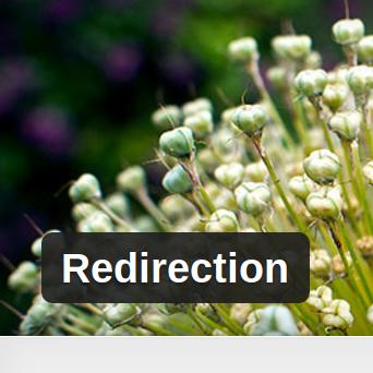 redirection-wordpress-plugin-review