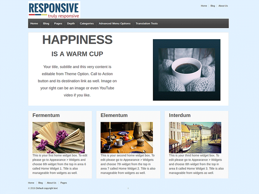 responsive-theme-review