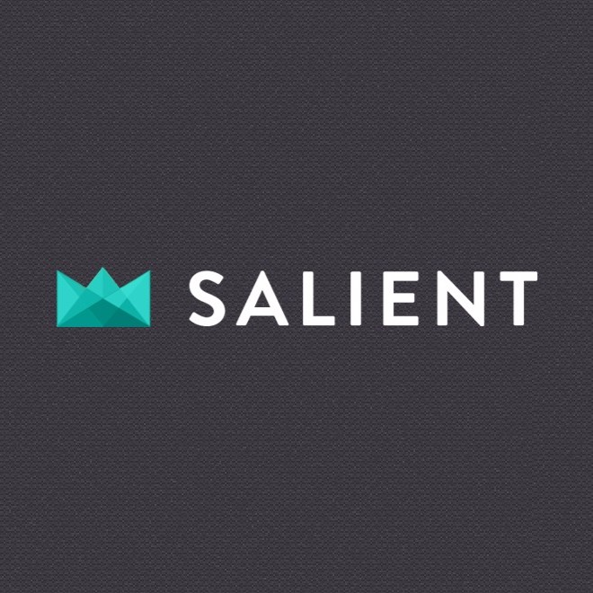 salient-theme-review-wordpress