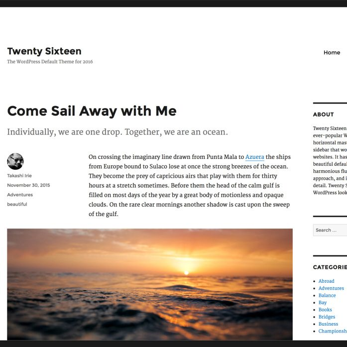 Twenty Sixteen Review