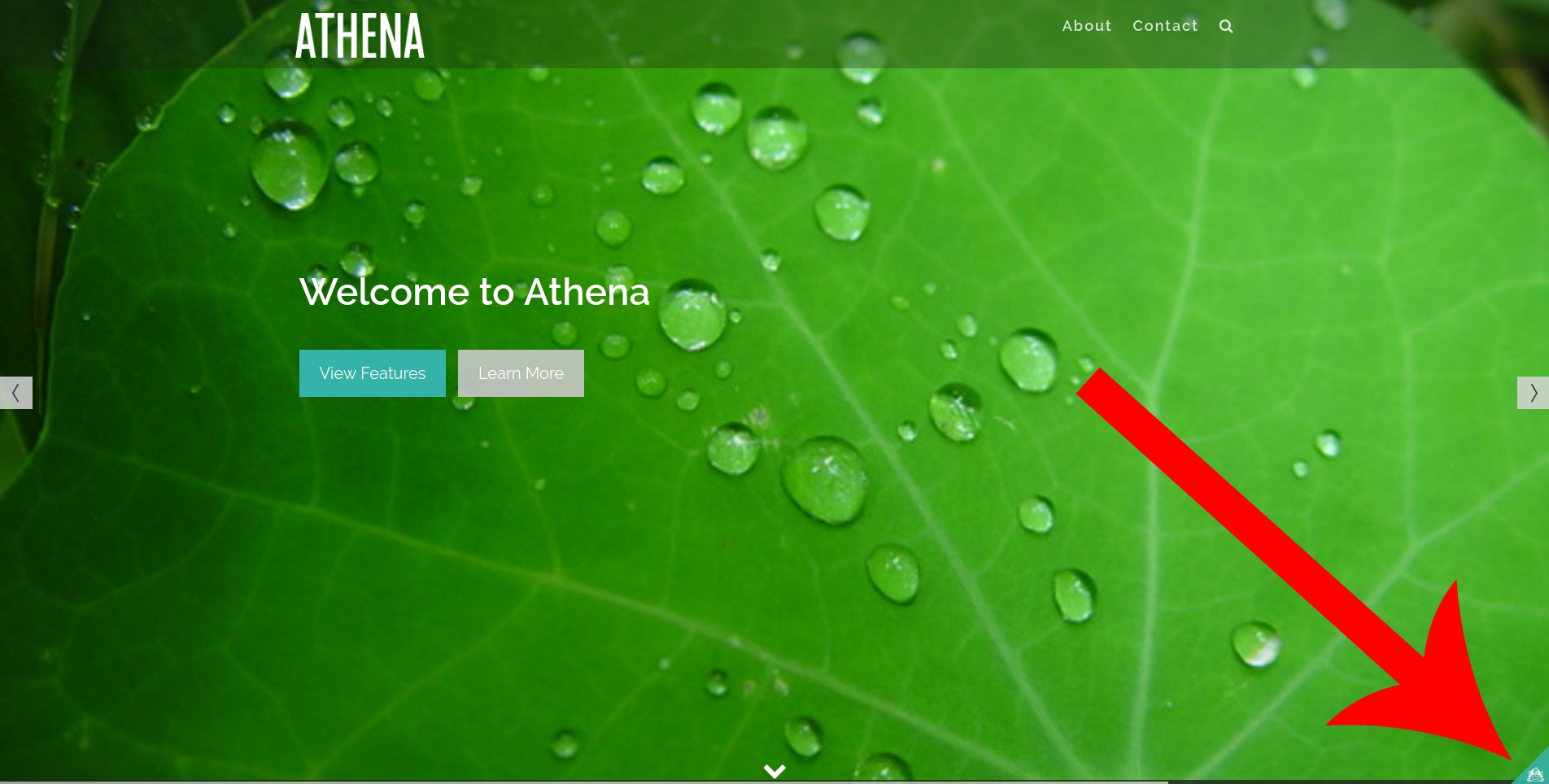 Athena Review - tiny tiny icon