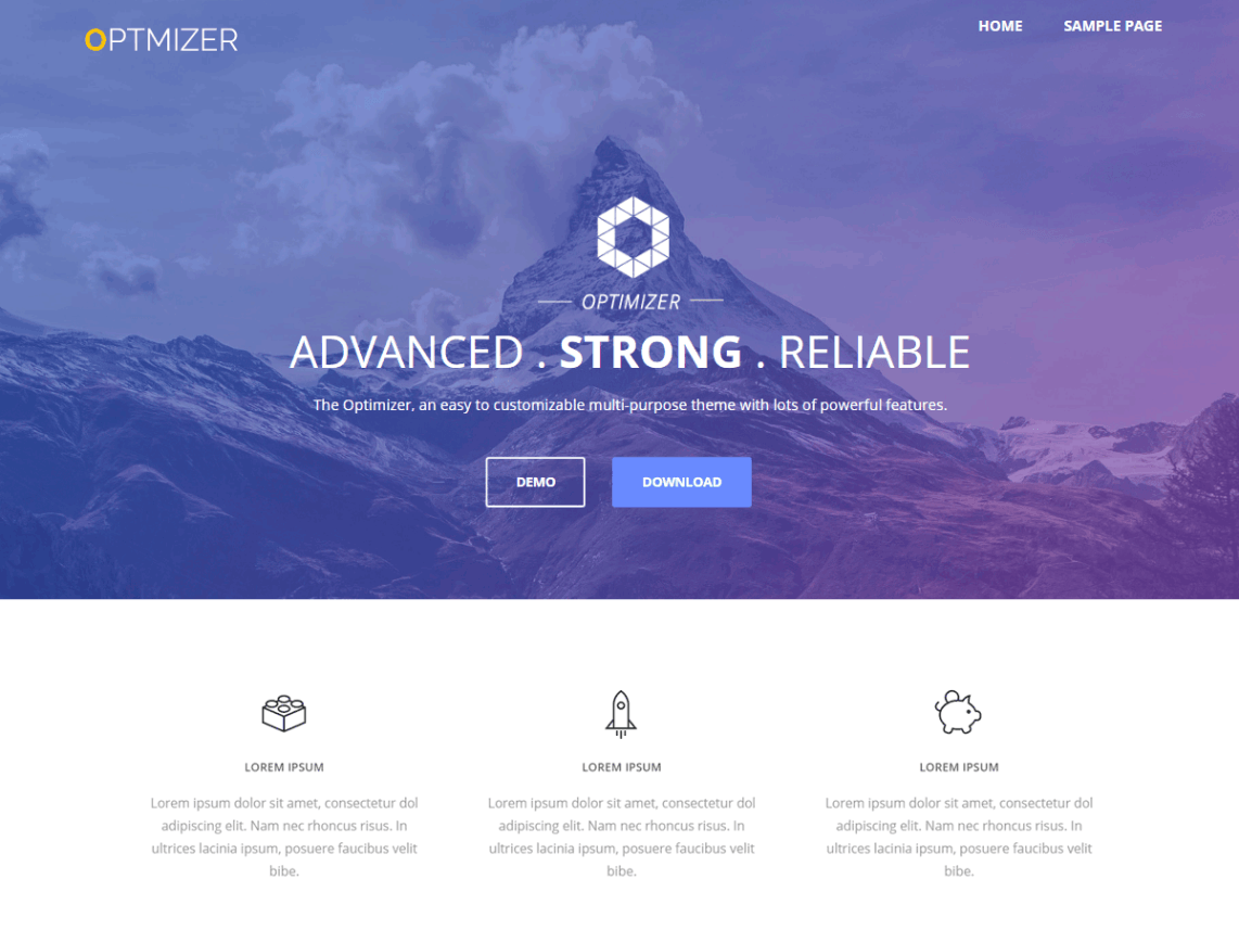 Optimizer WordPress Theme Review