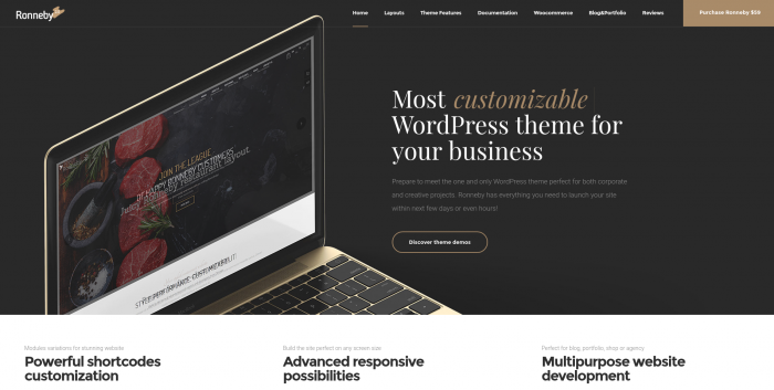 Ronneby WordPress Theme Review