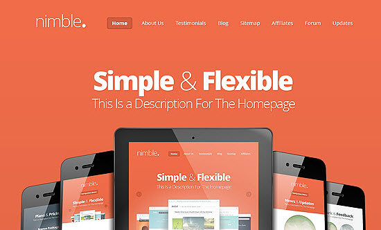 elegant themes nimble review