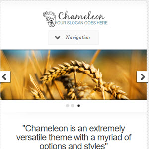 chameleon featured