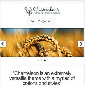 chameleon featured
