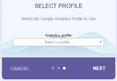 MonsterInsights Review - choose your profile