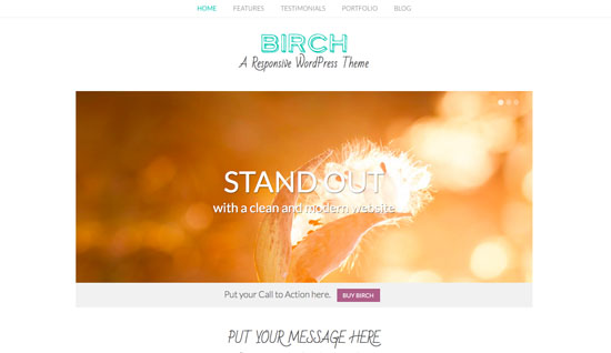 Birch Review