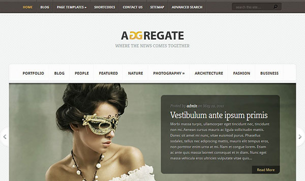 Elegant Theme Aggregate Review