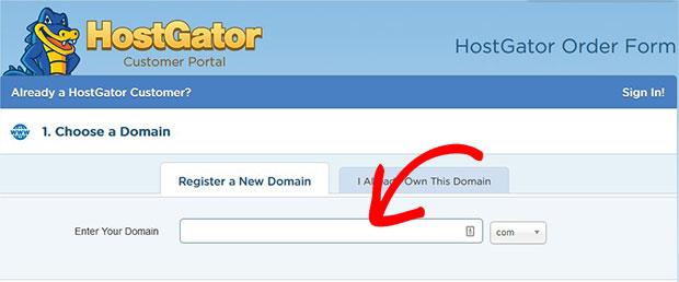 Enter Your Domain