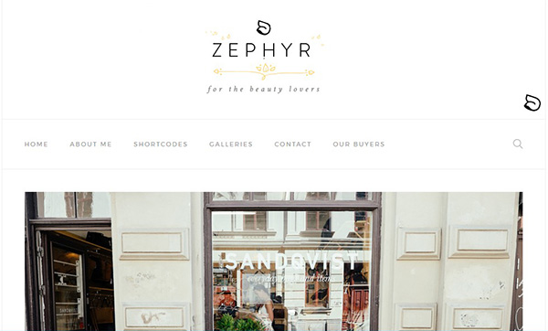 Zephyr Review