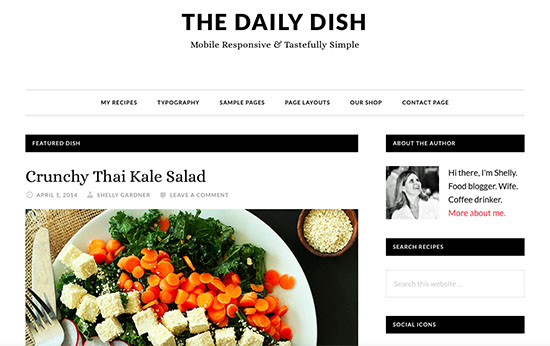 StudioPress Daily Dish Pro Review