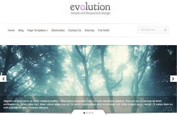 evolution theme review