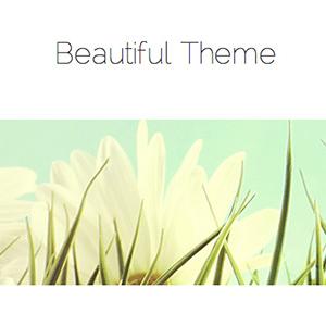 Beautiful Pro Review Thumbnail