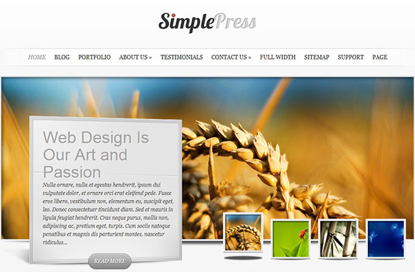 SimplePress Review