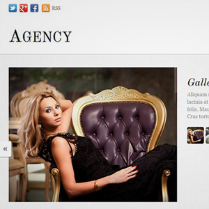 Themify Agency Review
