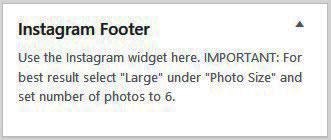 Instagram Widget Area