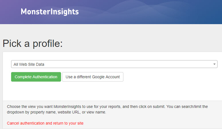 authenticate monsterinsights