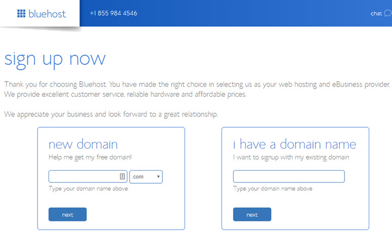 bluehost domain purchase