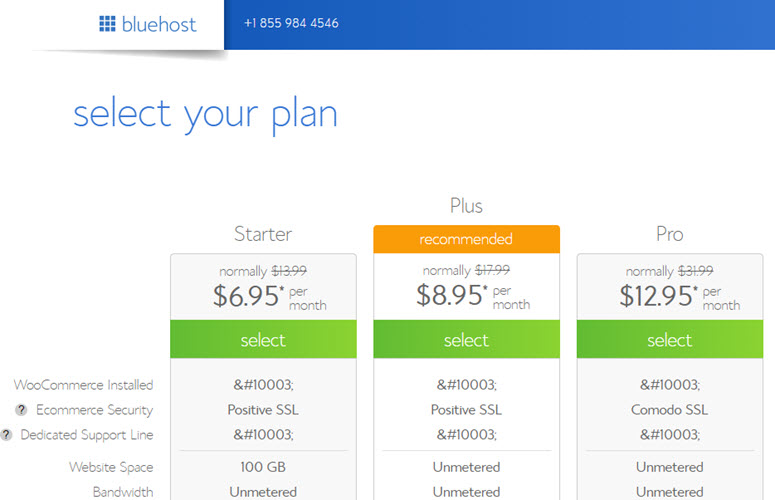 bluehost woocommerce hosting plan