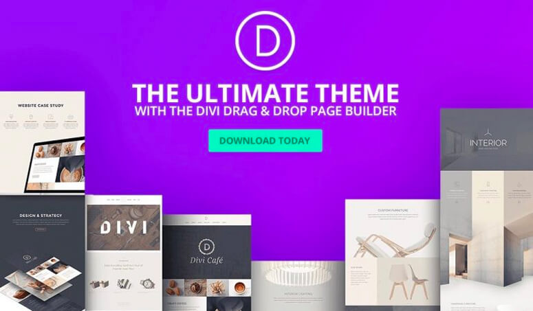 Divi Theme, seo optimized theme
