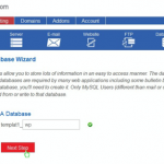 just host wordpress install