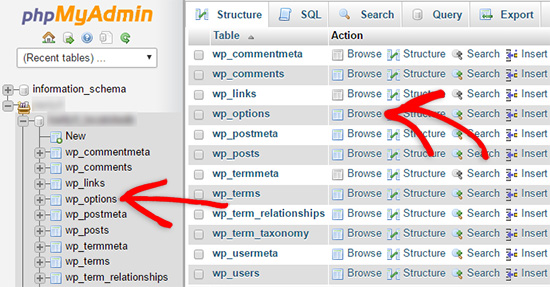 browse wp_options to upload wordpress website from localhost to cpanel