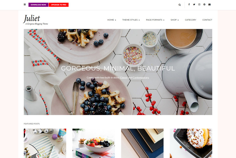 juliet-wordpress-theme