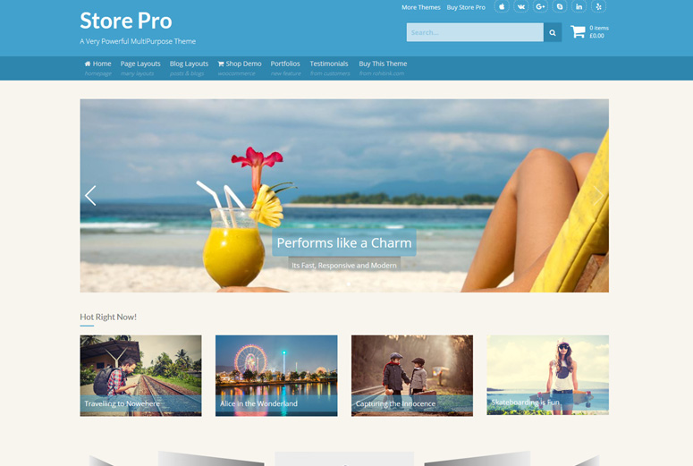 store-wordpress-theme