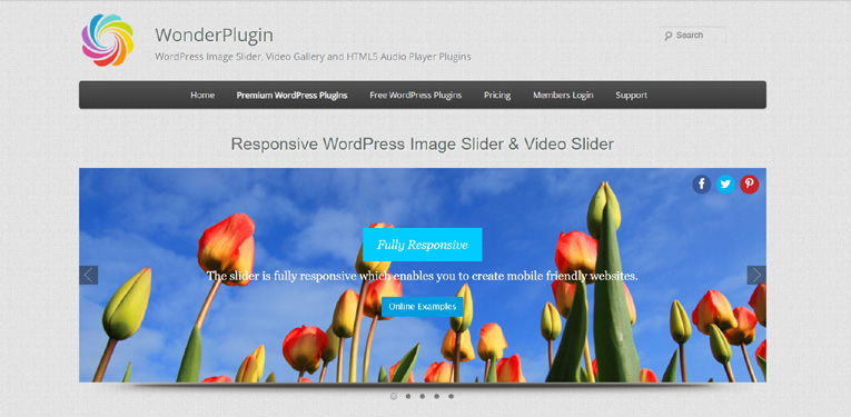 wonderplugin-wordpress-slider