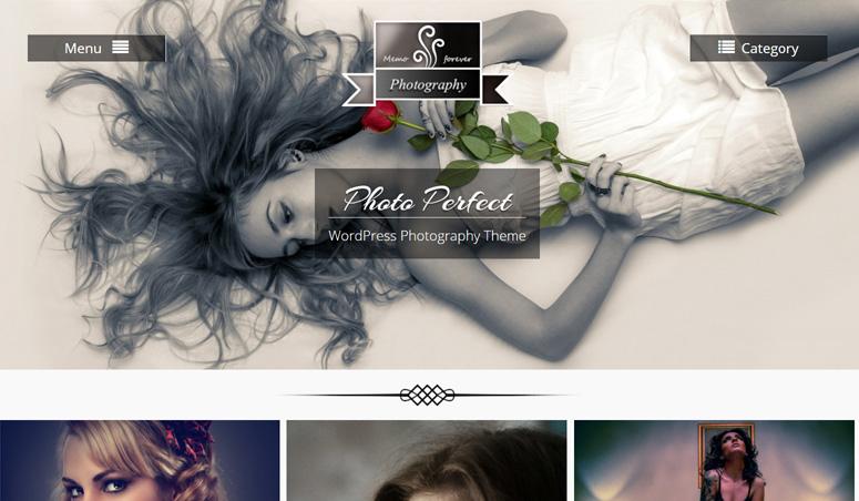 photo-perfect-wordpress-the