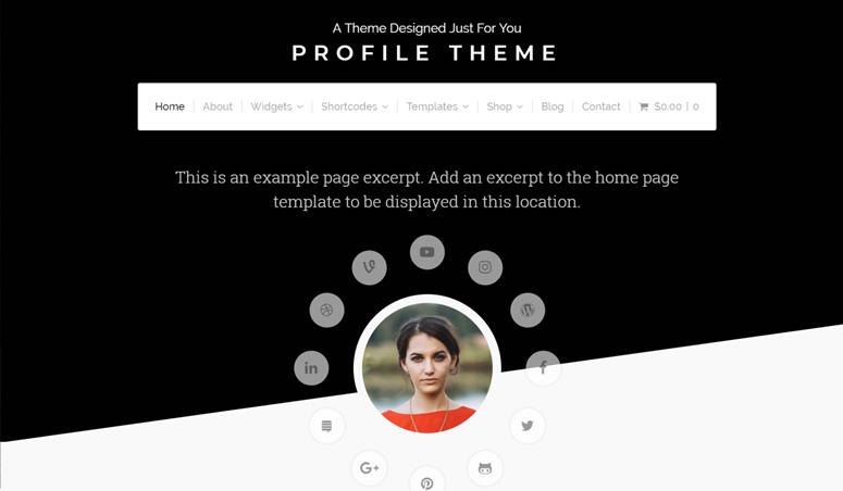 profile-wordpress-theme