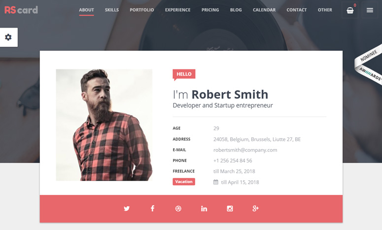 resume-cv-and-vcard-theme-wordpress