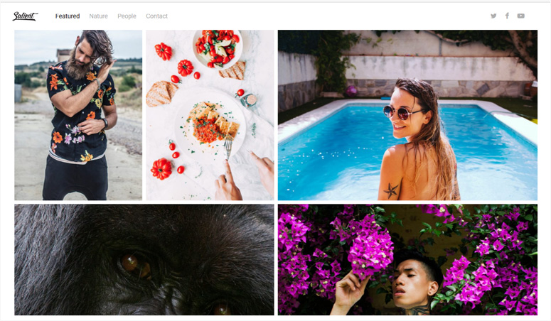 salient-theme-photography-site