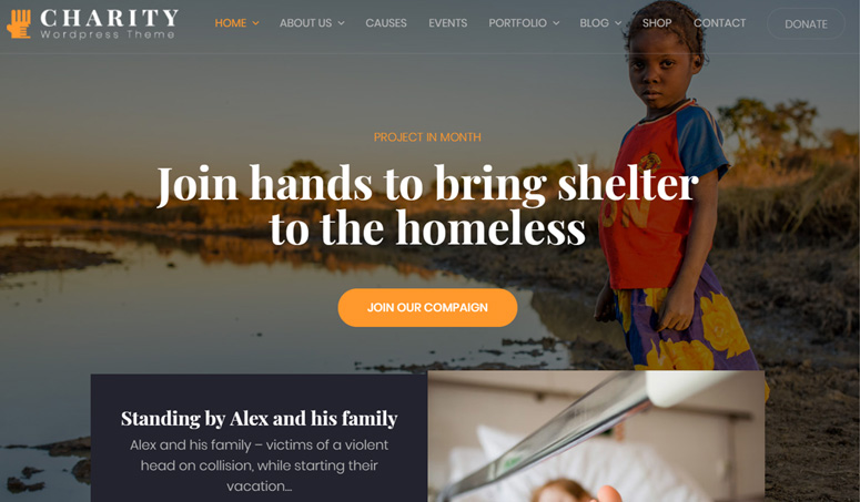 charity-wp-theme