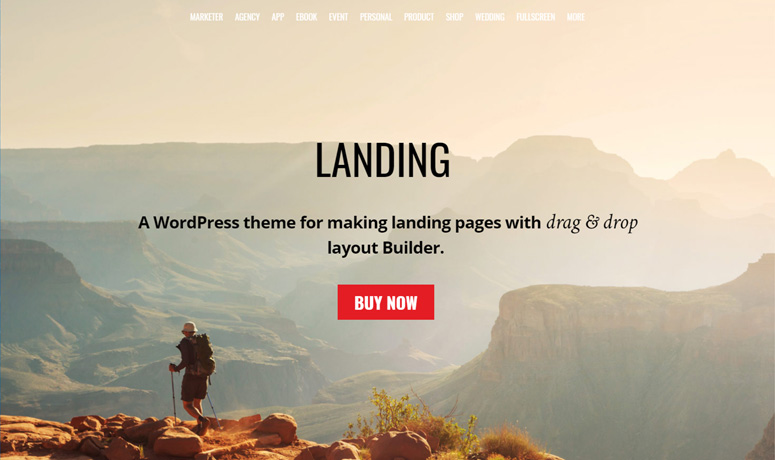 themify-landing-theme