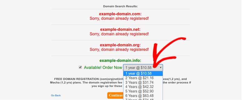 Domain registration period