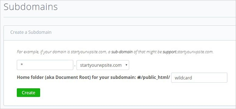 Wildcard subdomain