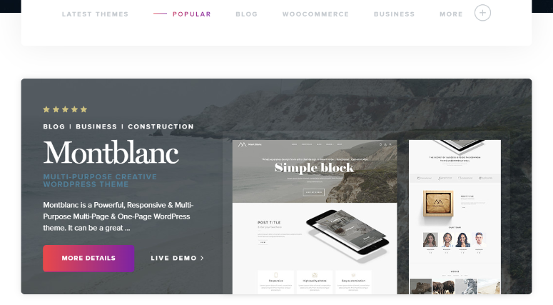 TeslaThemes WordPress themes