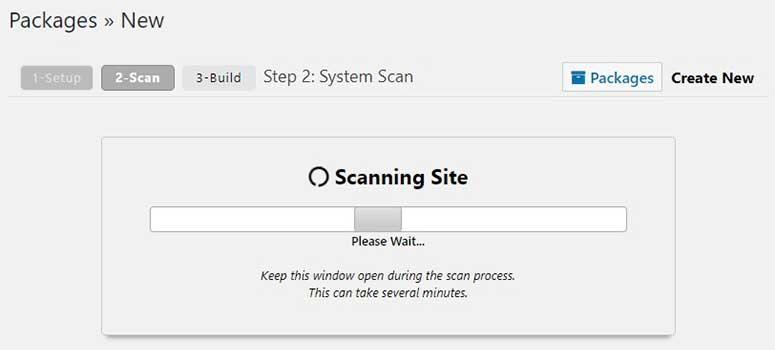 Website scan