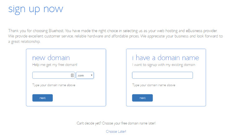 Bluehost-choose-domain