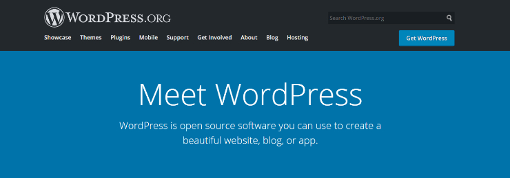 wordpress-review