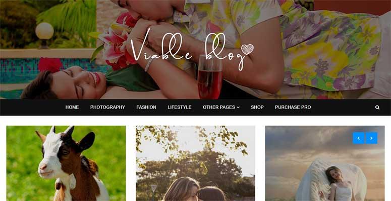 Viable Blog